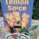 Leucadendron Lemon Spice label