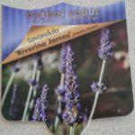 Lavender Riverina James Label